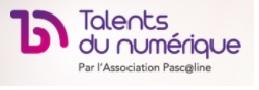 Logo Les talents du numérique